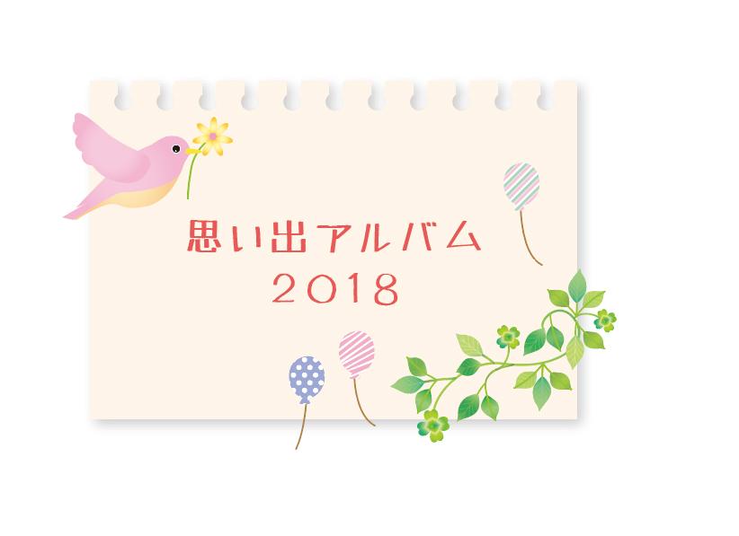 園の思い出アルバム2018